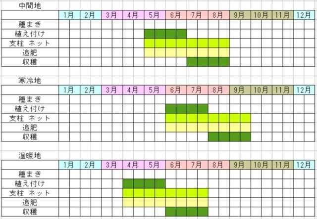 胡瓜の栽培カレンダー