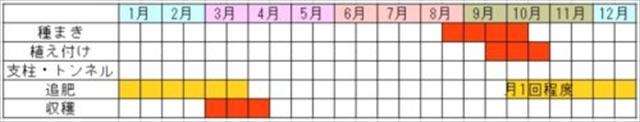 かきな&ノラボウ菜の栽培カレンダー