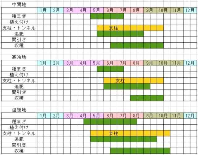 ささげの栽培カレンダー