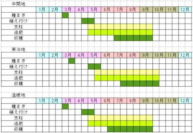 唐辛子の栽培カレンダー図