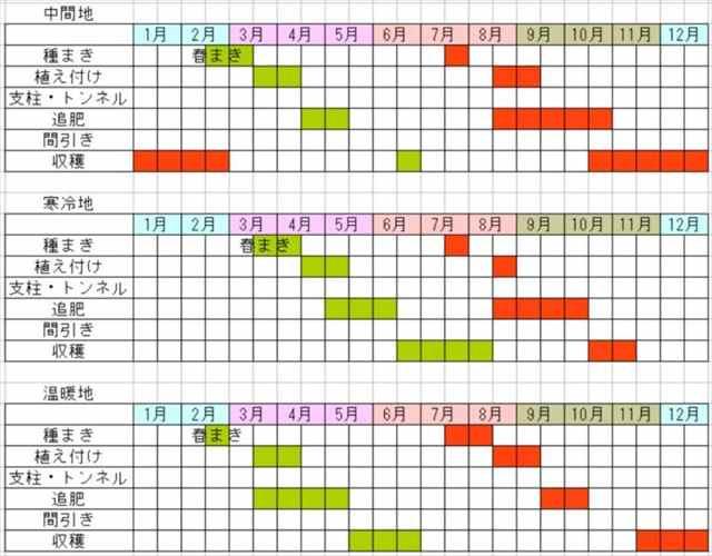 ブロッコリーの栽培カレンダー