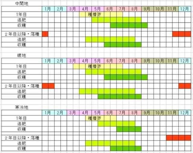 シソの栽培カレンダー