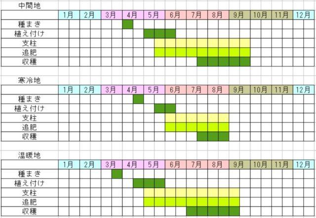 オクラの栽培カレンダー