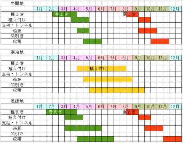 サンチゅの栽培カレンダー