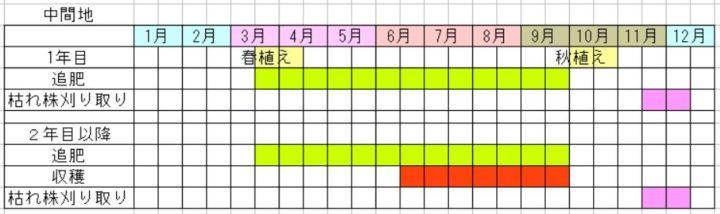 茗荷の栽培カレンダー